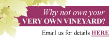 Own your own vineyard